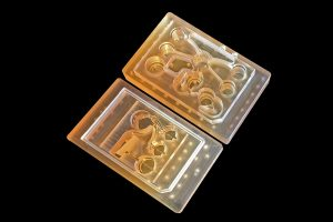 Body on a Chip Will Improve Human Drug Evaluation