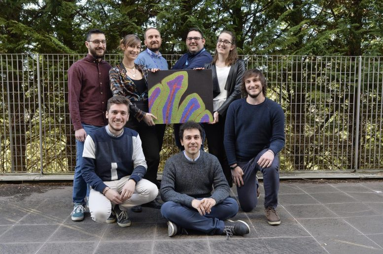 Brain Disorders and Cancer Research Team