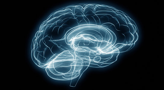 Brain Disruption Illustrates Similarities Between Mental Illnesses