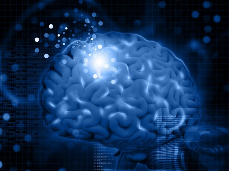 Brain Learning Concept