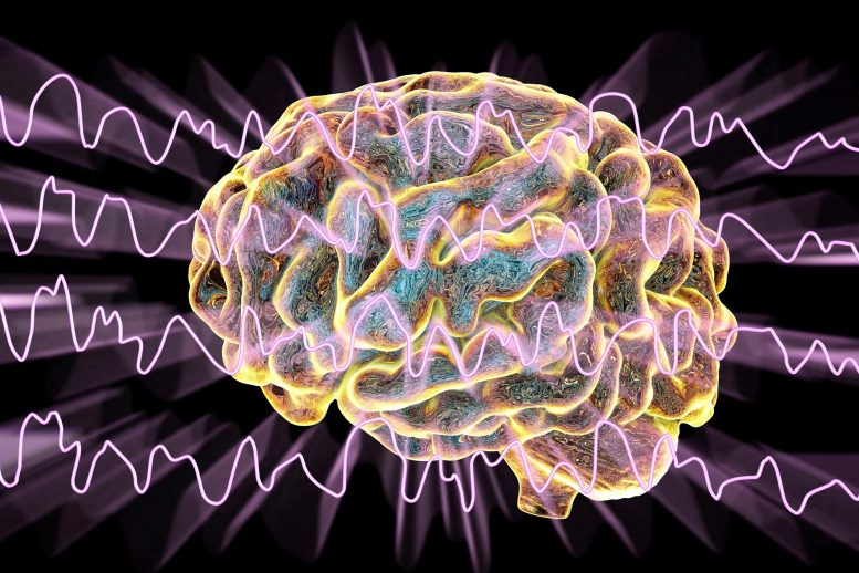 Brain Wave Patterns Antidepressants