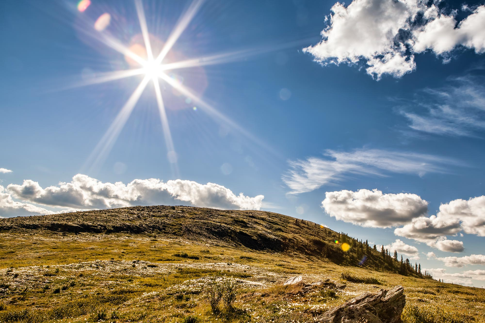 Harnessing the Entire Spectrum of Sunlight to Make Solar Energy More Efficient - SciTechDaily