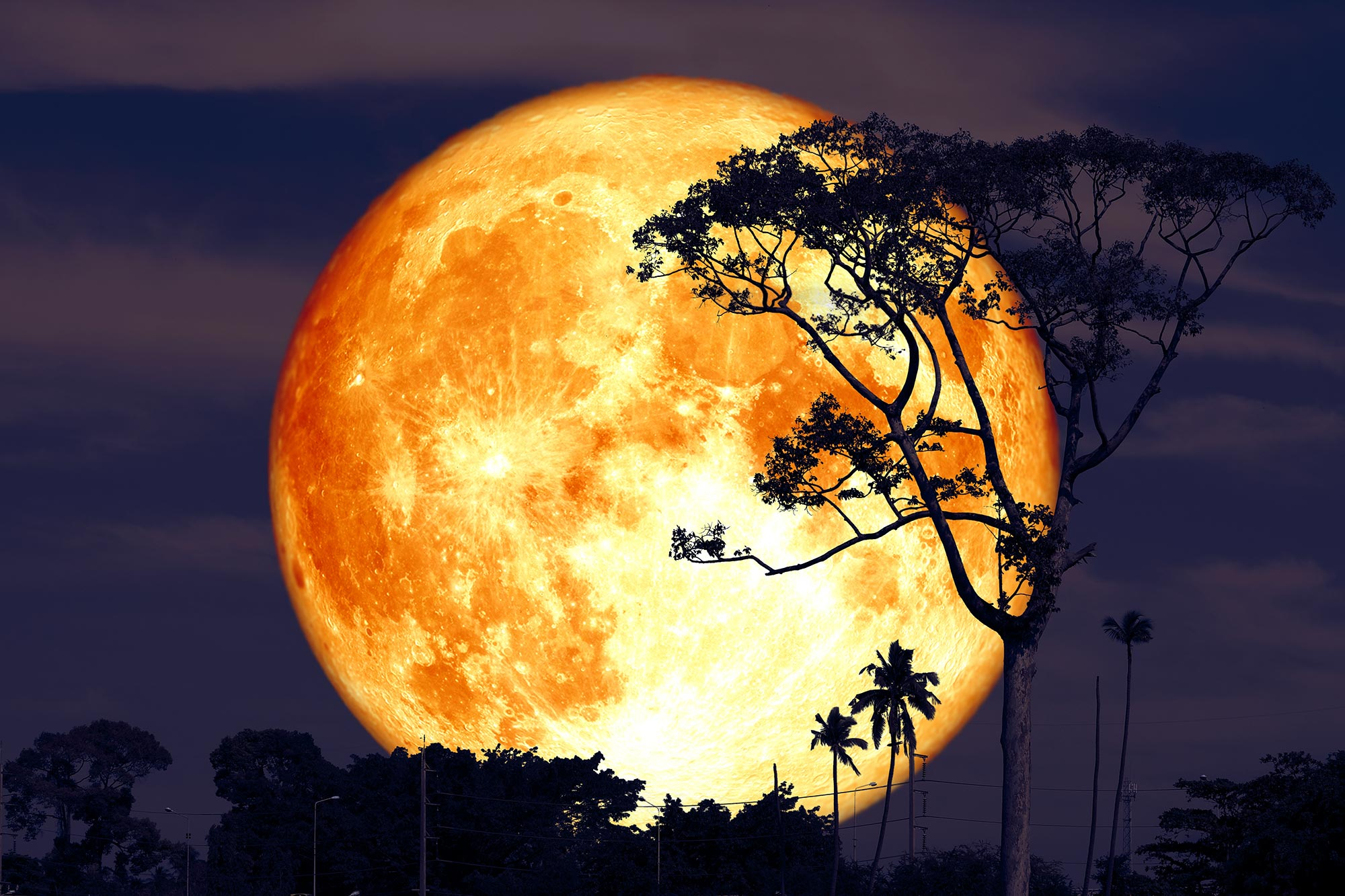 The Next Full Moon Is the Buck Moon – Here's Everything You Need to Know