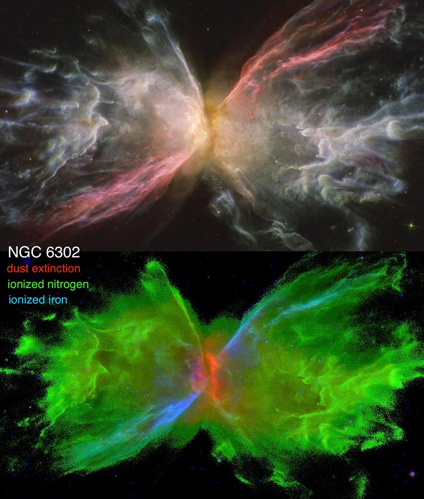 Dissecting the Anatomy of Planetary Nebulae Using the Hubble Space Telescope