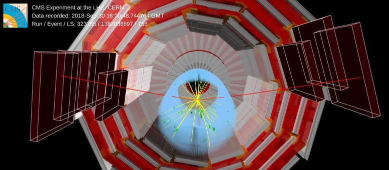 CMS Event Display Higgs Boson Decay to Two Muons