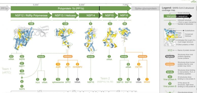 COVID-19 Protein Modeling Resource in Aquaria
