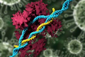 CRISPR-Carrying Nanoparticles Can Edit Genomes