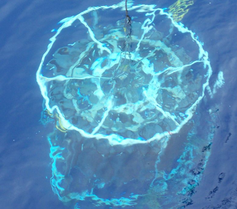 CTD Lowers Into Sargasso Sea