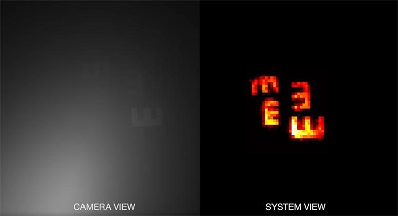 Camera View vs System View