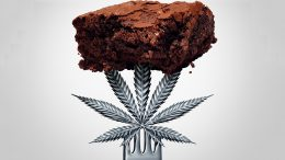 Cannabis Brownie