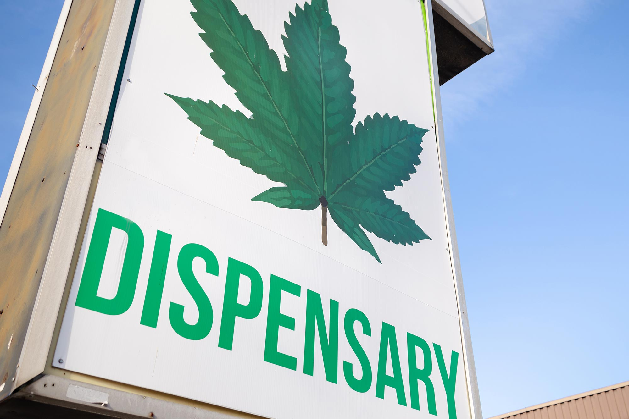 Access to Legal Cannabis Stores Linked to Reduction in Opioid Deaths