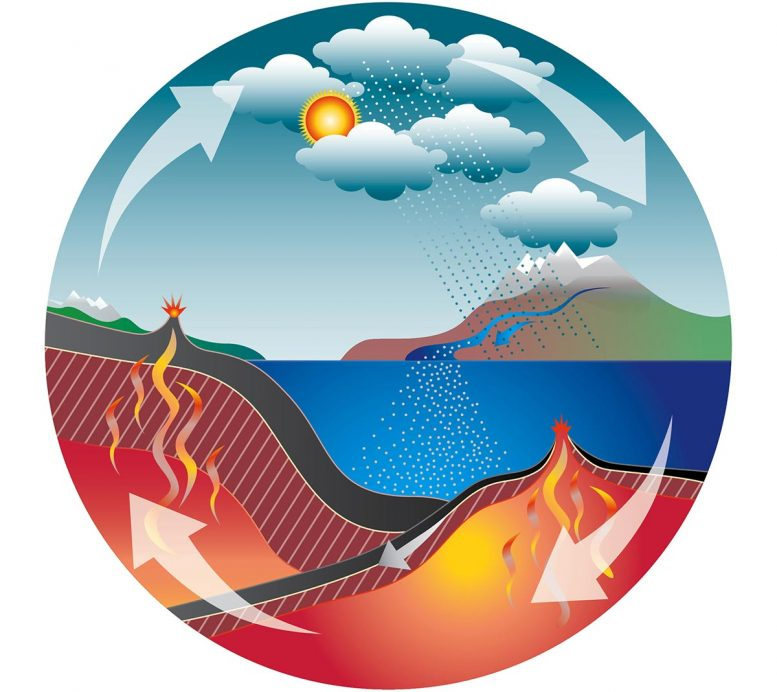 Carbon Cycle Earth