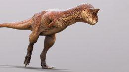 Carnotaurus Cover