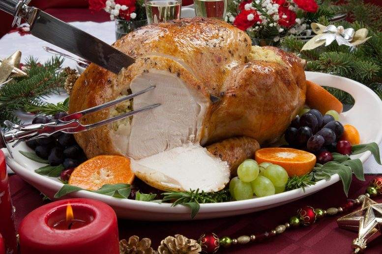 Carving Roasted Turkey White Meat