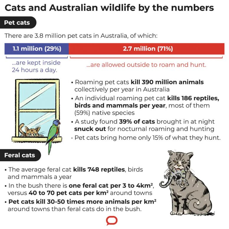 Cats and Australian Wildlife by the Numbers