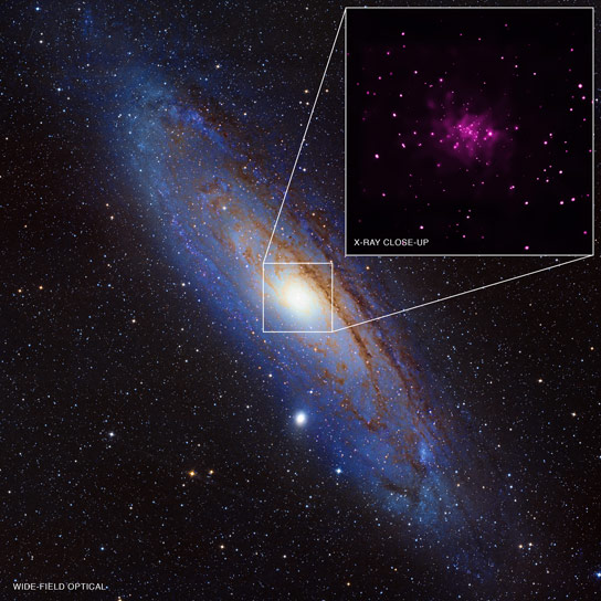 Chandra Data Reveals 26 New Black Hole Candidates in M31