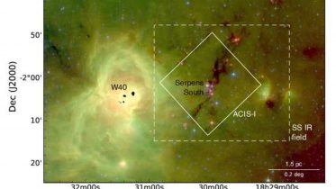 Chandra Detects Diskless Young Stars