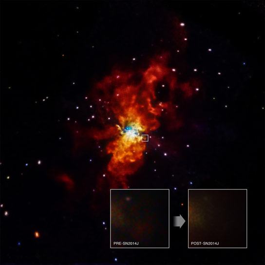 Chandra Observatory Searches for Trigger of Nearby Supernova SN2014J