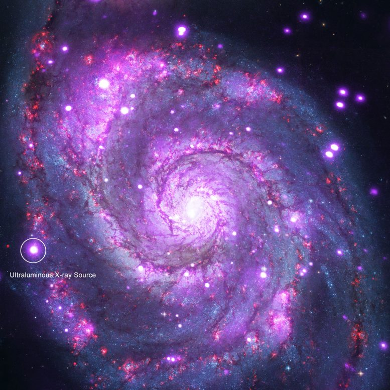 Chandra Reveals New Clues as to How ULXs Shine so Brightly