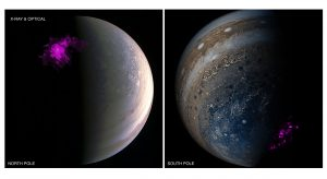 Chandra Views Jupiter's Independently Pulsating X-ray Auroras