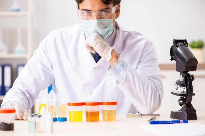 Chemist Working in Lab