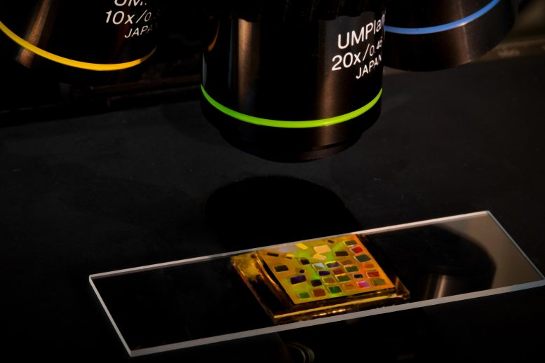 Chip Powered by Quantum Dots