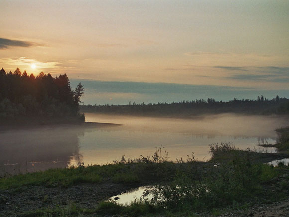Climate Change Threatens Dark Taiga