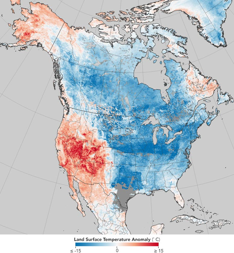 Climate Signals in Daily Weather
