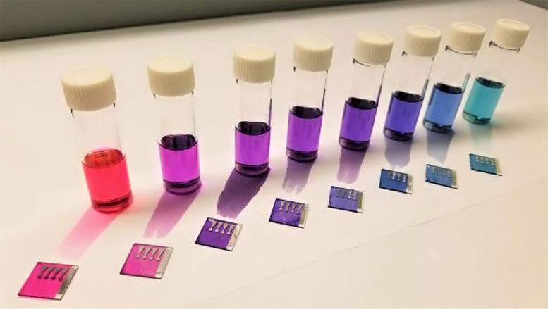 Colorful Polymer Solar Cells
