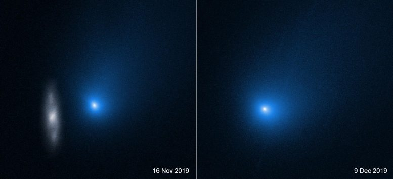 Comet 2I/Borisov Hubble Space Telescope