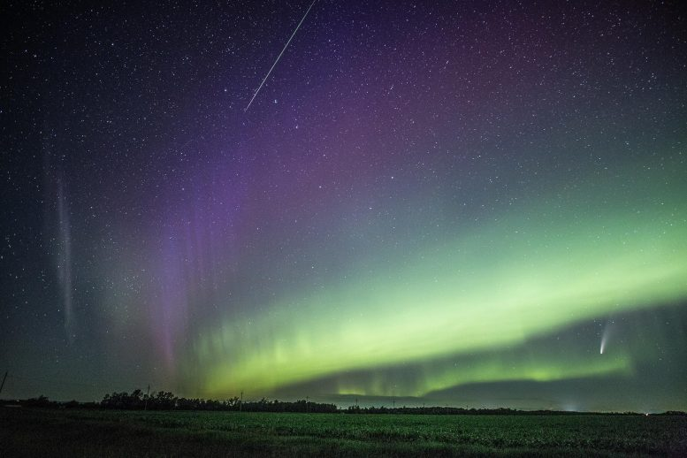 Comet NEOWISE Seen in an Aurora-Filled Sky