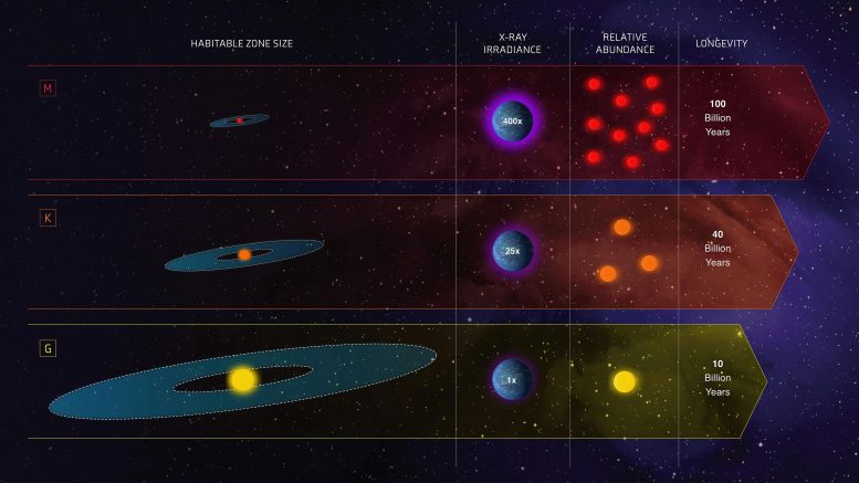 Comparison of G, K, and M Stars for Habitability