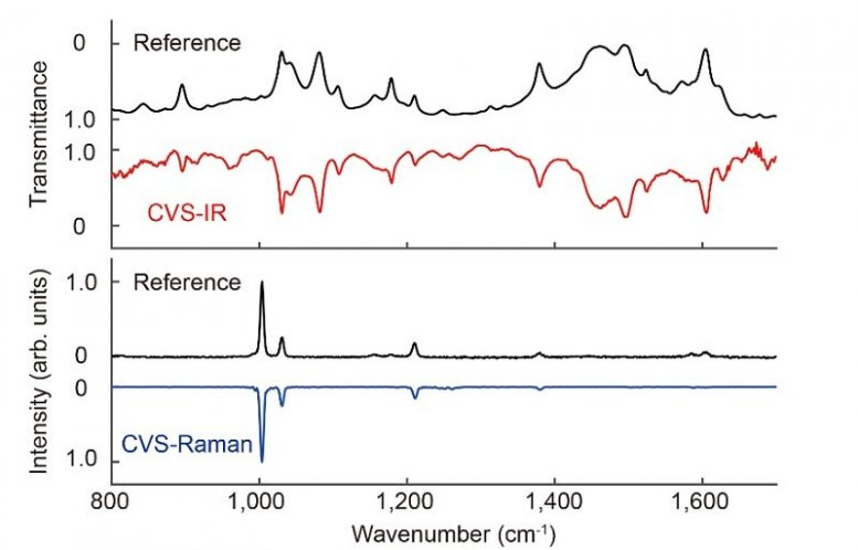 Complementary Vibrational Spectra of Toluene