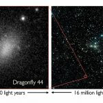 Confirmation of the Existence of Large Diffuse Galaxies in the Coma Cluster
