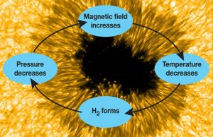 Cool Gas May Form and Strengthen Sunspots