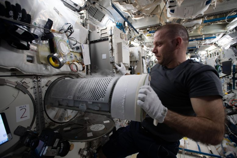 Cosmonaut Ivan Vagner Transfers Biological Samples