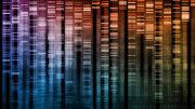 DNA Research of Science