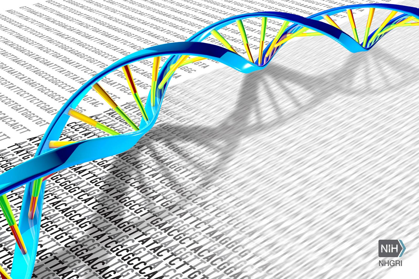 Landmark Study: Sequencing of 64 Full Human Genomes to Better Capture Genetic Diversity - SciTechDaily