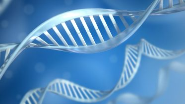 DNA Is Just One Among Millions of Possible Genetic Molecules – Clues for