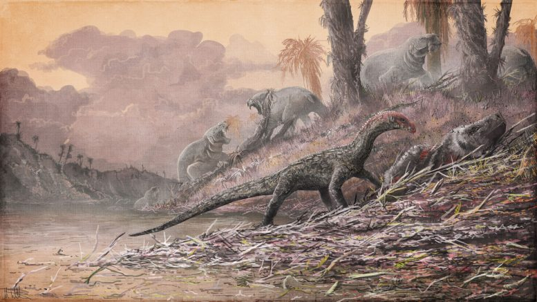 Decade of Fossil Collecting in Africa Gives New Perspective on Triassic Period