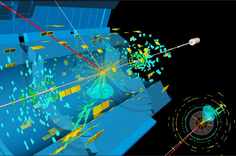 Decay Signature of the Higgs Boson