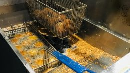 Deep Fryer with Canola Oil