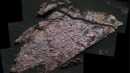 Desiccation Cracks Help Reveal the Shape of Water on Mars