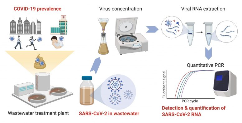 Detecting SARS-CoV-2 in Wastewater
