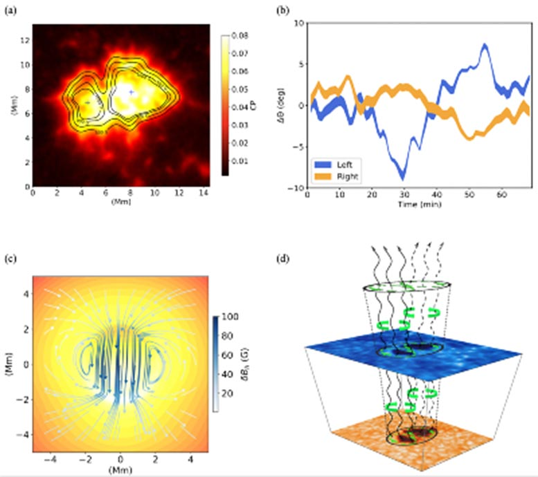 Detection of Torsional Oscillations in Solar Photosphere