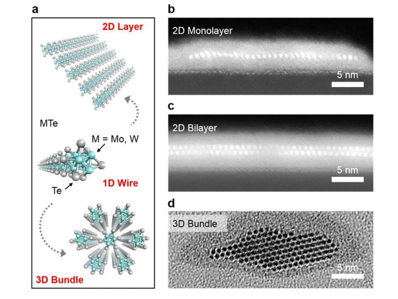 Different shapes of nanowires