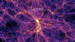 Digital Simulation Shows the Large-Scale Distribution of Matter