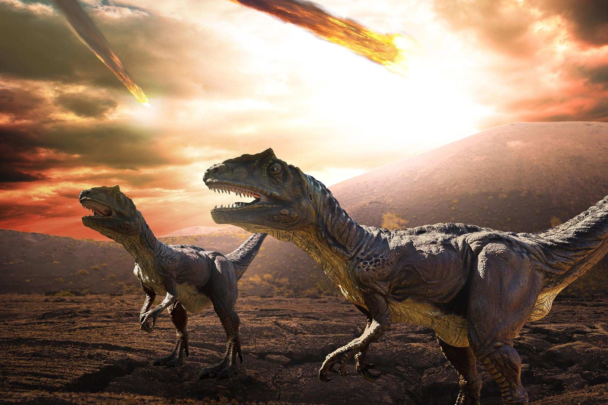 Mass Extinction That Killed the Dinosaurs Was All About the Asteroid – Not  Volcanoes
