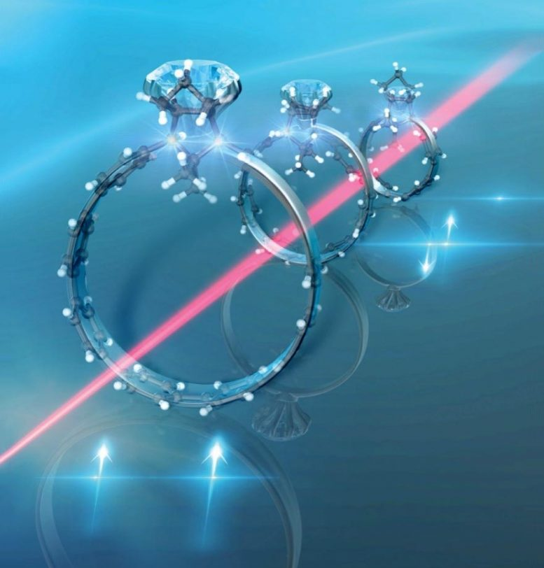 Diradicals Embedded in Curved Paraphenylene Units