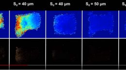 Duke Researchers Develop a Safer Route to Ultrasonic Therapy
